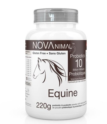 Probiotics for horses in natural plum-flavoured powder. 10 Billion CFU per scoop.